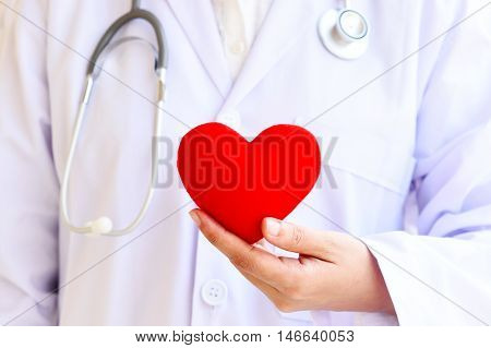 Doctor holding heart with stethoscope, medical concept