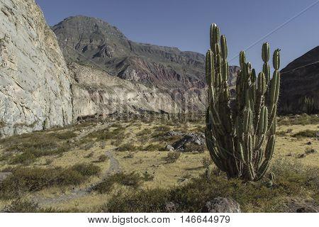 Peru, Cotahuasi Canyon. The Wolds Deepest Canyon.
