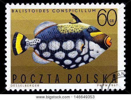 Poland - Circa 1967