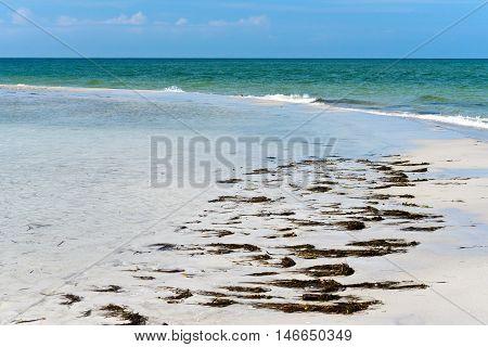Beautiful Sandy Beach along the Coastline of Anna Maria Island Florida