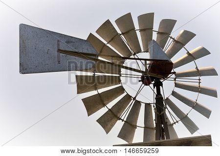 A metal weather vane in the garden