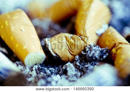 A closeup of cigarette butts snubbed and left in a tray of ash.