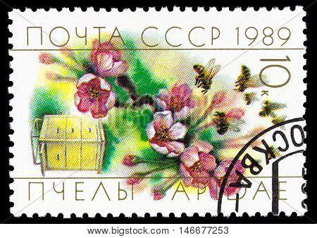 Ussr - Circa 1989