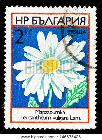 Bulgaria - Circa 1985