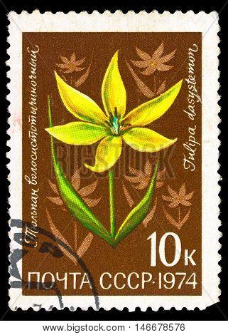 Ussr - Circa 1974