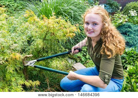 Young caucasian woman pruning japanese maple with secateurs