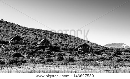 B & W Landscape Of The Travelling Tortoise