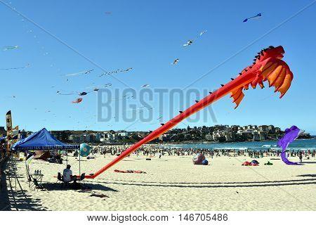 Bondi beach Sydney Australia - Sept 11 2016. Kite flyers and tourists attend the annual kite flying festival at Bondi Beach Sydney. Festival of the Winds.