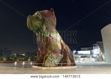 Bilbao Spain - September 12 2016: Puppy guarding the Guggenheim Museum at night. Puppy is a sculpture designed by Jeff Koons in 1992 in front of the Guggenheim museum of Bilbao Spain. Wide angle shot.