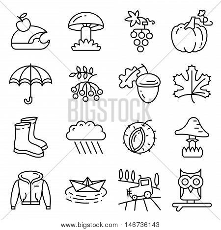 Fall season line art thin and simply icons set. Web pictograms with autumn and crop objects as mushrooms rainy cloud paper boat in a pool field landscape with tractor leaves rowan berries grape chestnut acorn gumboots owl and hedgehog pumpkin