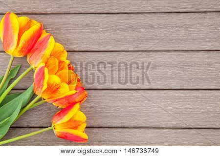 Tulips On Wooden