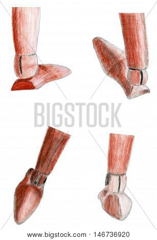 Set hand drawn sepia and sanguine sketch of a wooden figure foot illustration isolated on white
