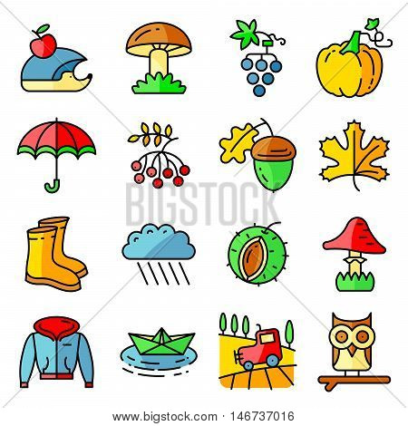 Fall season colorful thin and simply icons set. Web pictograms with autumn and crop objects as mushrooms rainy cloud paper boat in a pool field landscape with tractor leaves rowan berries grape chestnut acorn gumboots owl and hedgehog pumpkin