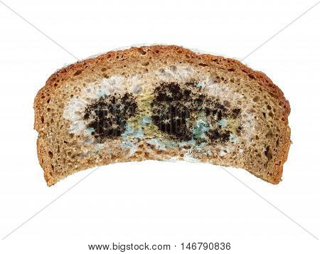 One slice of moldy bread on white background