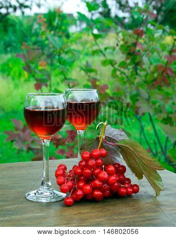 Viburnum Drink In A Glass Wineglass