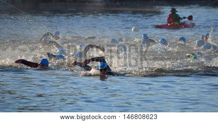 St Neots, Cambridgeshire, England - September 11, 2016: Triathlon swimmers in the river Ouse