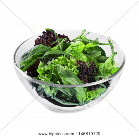 Fresh green salad with spinach,arugula,rom aine and lettuce