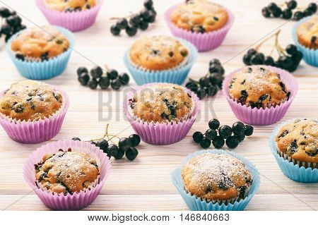 Sweet muffins with chokeberries (aronia) on white wooden table.