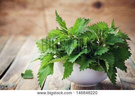 Young nettle leaves in pot on rustic background, stinging urtica. Vintage style.