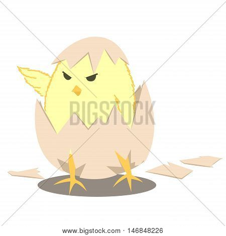 chick hatch egg leader baby chick cartoon