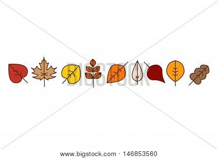 Vector autumn leaves red, orange yellow colors fall season