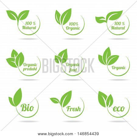 Set of bright green labels with leaves for organic, natural, eco or bio products isolated on white background