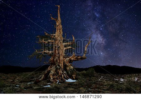 Luminous Light Painted Landscape of Camping and Stars