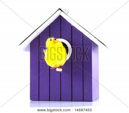 Single Bird House