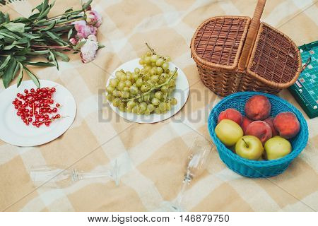 Healthy summer picnic laid out on a fresh red and white checked country cloth on green grass with croissants jam fresh fruit butter and blueberries overhead view