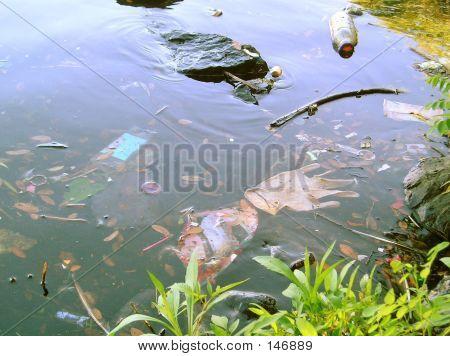 Littered Lake