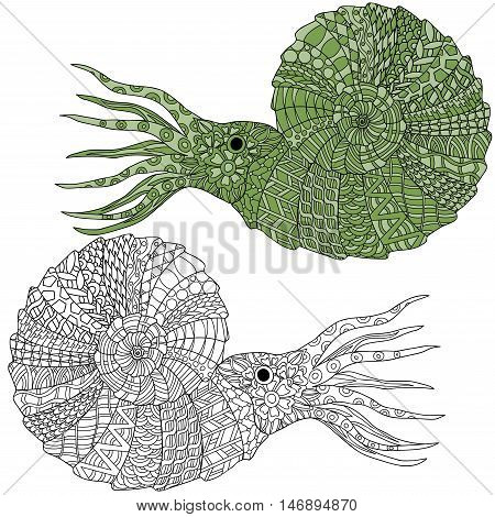 Hand drawn ammonite shellfish vector illustration. Anti stress coloring page zentangle art ethnic doodle pattern.