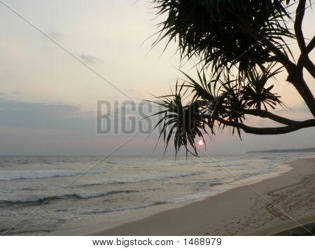 Evening Scene Of A Beach