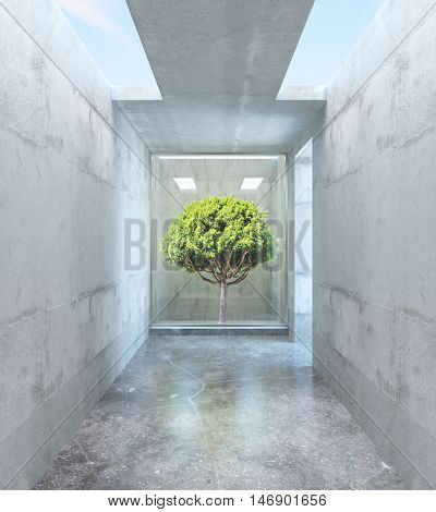 Abstract concrete room with green tree and openings in ceiling. Success concept. 3D Rendering