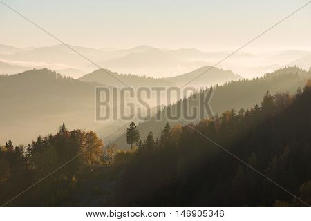 Sunny morning light in the mountains. Autumn landscape with silhouettes of hills and trees. Carpathians, Ukraine, Europe