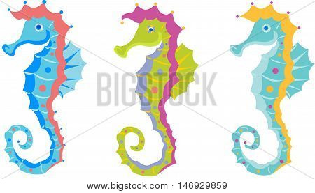 Seahorse fish in different bright color variations