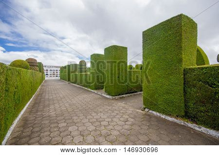 TULCAN, ECUADOR - JULY 3, 2016: the garden of the cemetery is very famous because of its topiary.