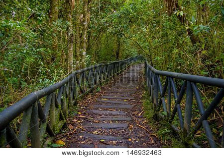 PASTO, COLOMBIA - JULY 3, 2016: wood path in the middle of la cotora island.