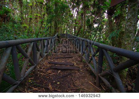PASTO, COLOMBIA - JULY 3, 2016: la cotora island is a small national park located in la cocha lake.