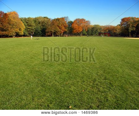 Autumn grass and trees Great Lawn Central Park Manhattan New York poster