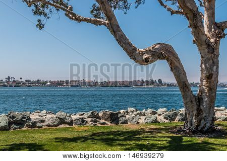 View of city of Coronado and San Diego bay, as seen from Embarcadero Park South in San Diego, California.