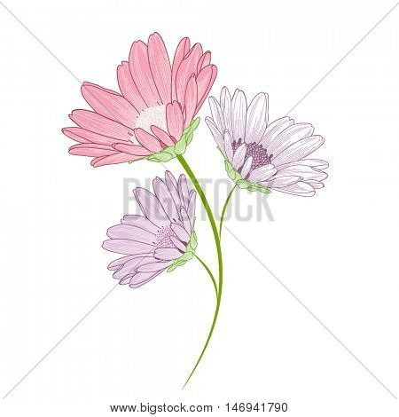 Beautiful abstract floral background with hand-drawn flower chamomile. Vector illustration. Element for design.