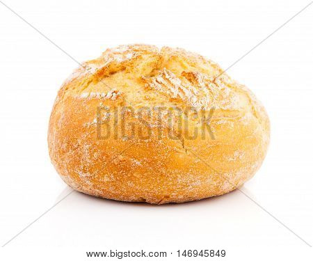 fresh bun isolated on a white background
