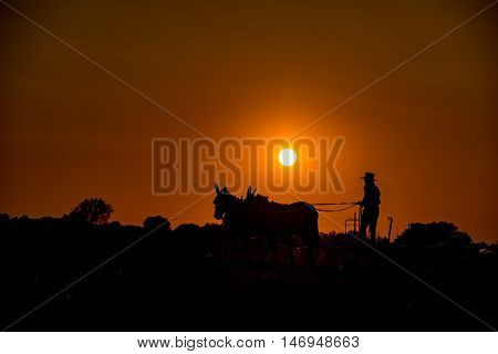 Amish While Farming With Horses At Sunset