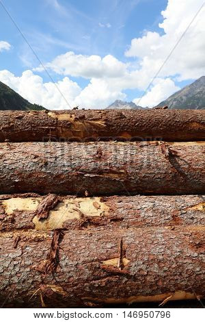 Pile of Wood in Lechtal Valley. Tirol. Austria