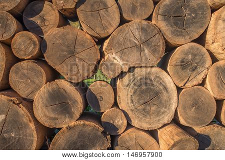 Wooden logs are stacked one on top of the other to create a wall.