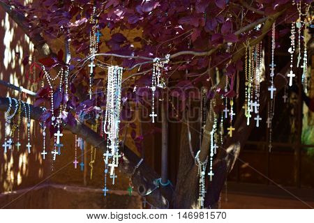 Rosary Tree which holds many rosaries hanging from tree branches taken at Loretto Chapel in Santa Fe, NM