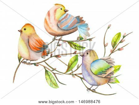 Illustration of the watercolor birds on the tree branches, hand drawn isolated on a white background