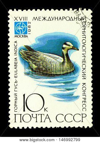 Russia - Circa 1982