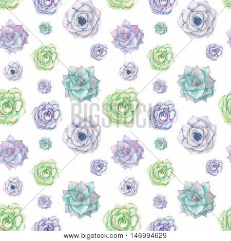 Seamless pattern with the watercolor tender mint and purple succulents, hand drawn on a white background