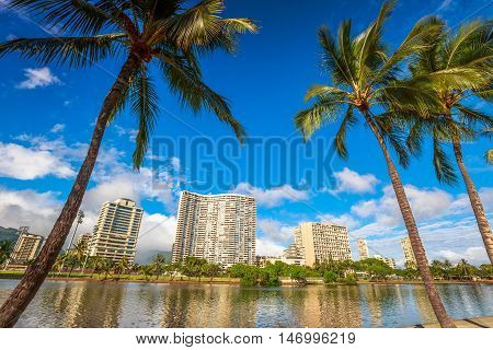 Honolulu city skyline with palm trees. Hotel and Honolulu skyscrapers reflected in the Ala Wai Canal in Oahu, Hawaii.